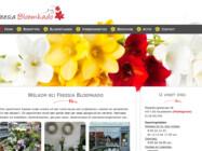 Website Ontwikkeling Freesie Bloemkado Koudekerke