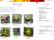 Website Ontwikkeling Freesie Bloemkado Koudekerke1