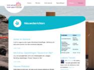 Website Ontwikkeling6