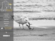 Stranddroom Domburg Website Ontwikkeling